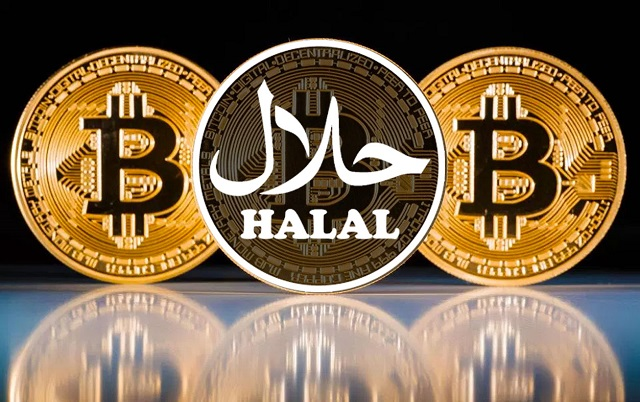 11 Poin MUI tentang Bitcoin yang Diharamkan Sebagai Investasi - cryptonews.id