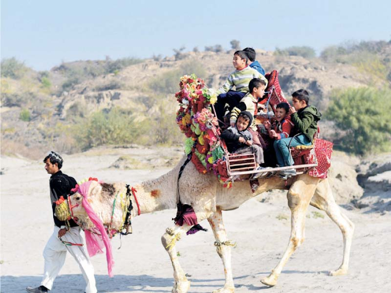 Orphans enjoy a camel ride on riverbank, while a PTDC volunteer distributes books among children. PHOTO: EXPRESS