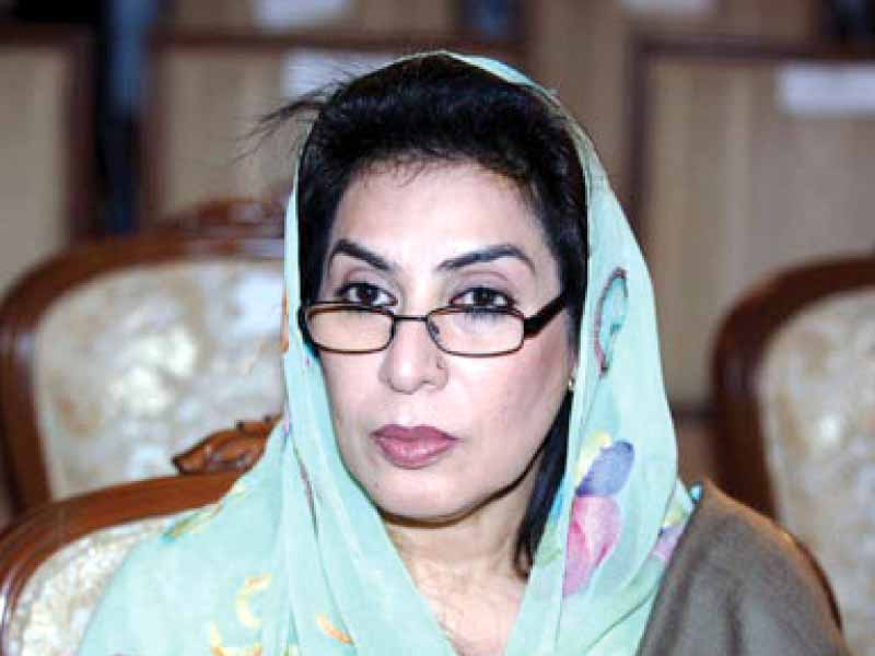 GDA's Fehmida Mirza said individuals have become stronger and institutions weaker following these elections. PHOTO: FILE
