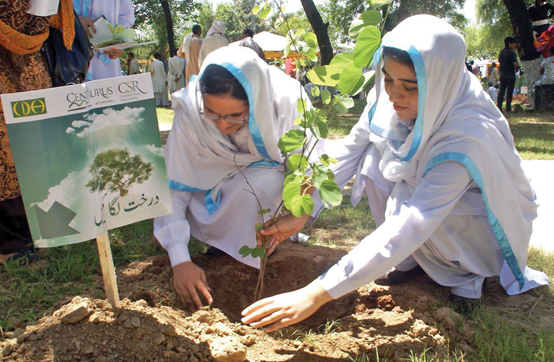 Students take part in a tree plantation drive in Islamabad. PHOTO: FILE