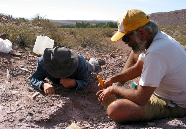 The region where the new species of sauropod was found is unusual as it would have been a desert during that era, 110 million years ago. PHOTO: AFP