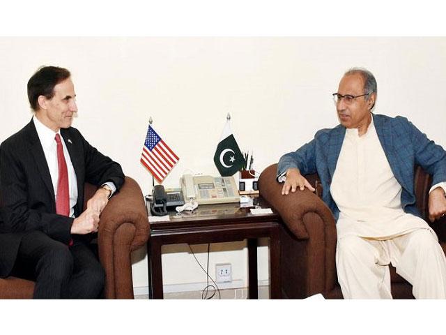 US diplomat Paul W Jones calls on PM's Adviser on Finance Hafeez Shaikh.