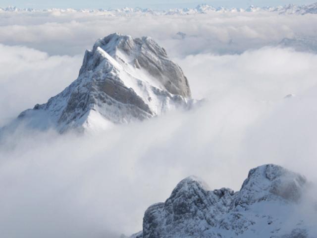 Swiss Alps. PHOTO: REUTERS