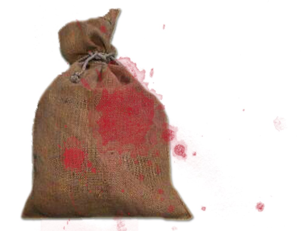 The PHC also ordered to constitute a high-level inquiry team to question those doctors who allegedly concealed facts surrounding bodies recovered in gunny bags. PHOTO: FILE