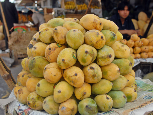 A Pakistani fruit vendor surrounded by mangos waits for customers in a main fruit market in Islamabad on July 4, 2009. PHOTO: AFP