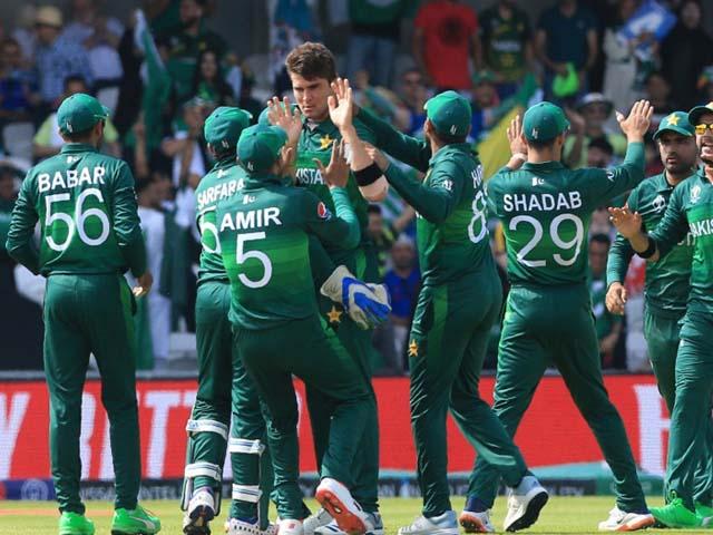 Shaheen Shah Afridi celebrates with teammates after the dismissal of Hashmatullah Shahidi. PHOTO: GETTY