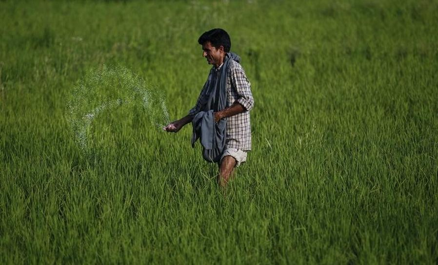 Urea sales likely to rise 74%